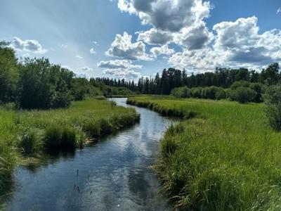 River near Columbia Falls - Montana Fish, Wildlife & Parks (Region 1)