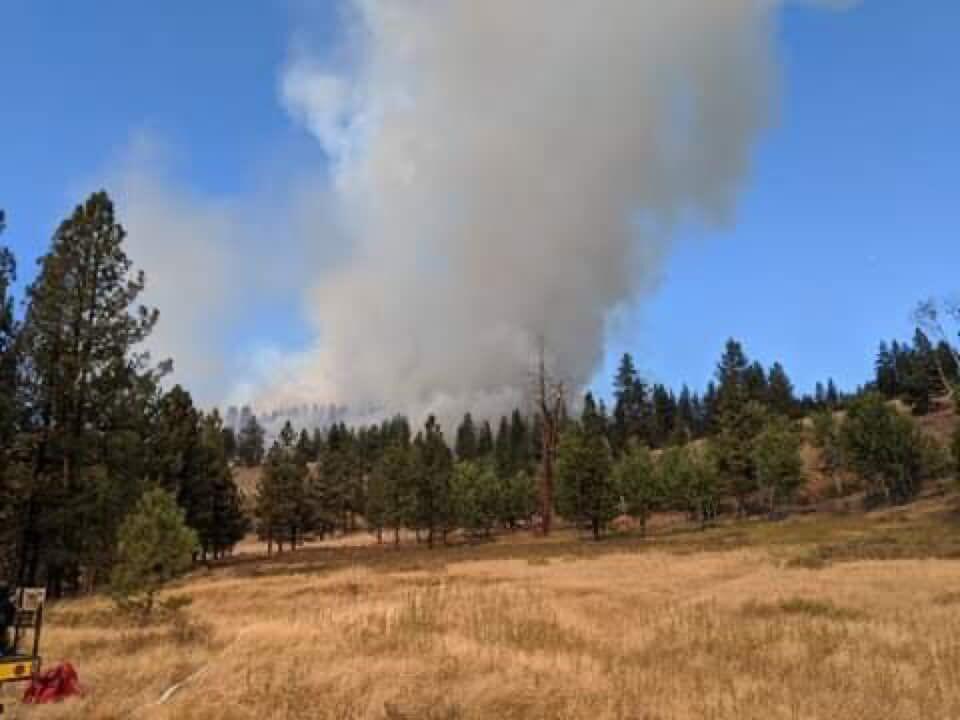 Valley Creek Fire