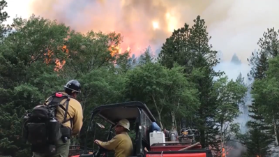 Generic firefighters and wildfire