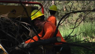 Frenchtown Rural Fire helps homeowners prepare for fire season