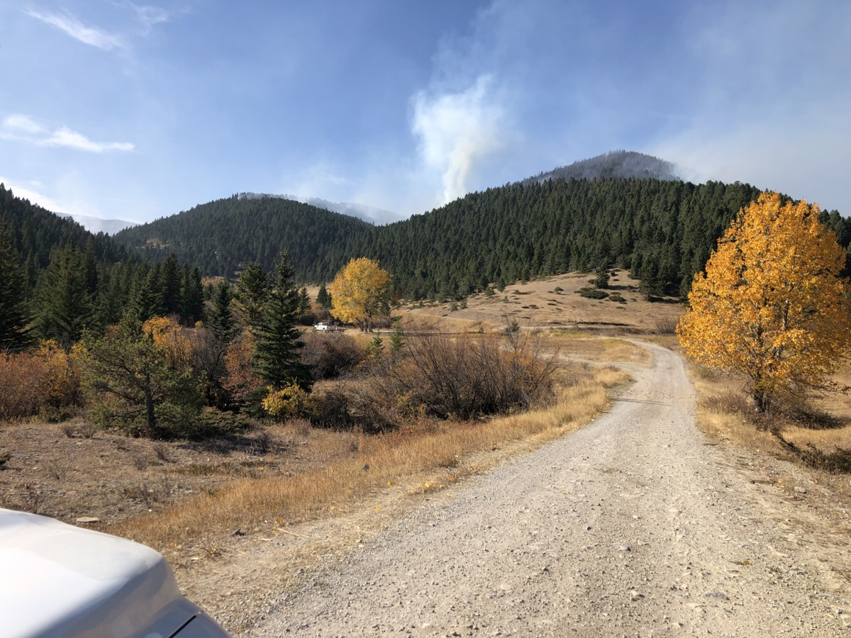 Yogo fire October 9