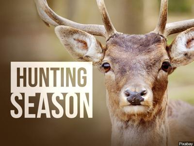 Hunter success rates at or above average across west-central and southwest Montana