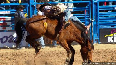 2020 Last Chance Stampede & Fair cancelled
