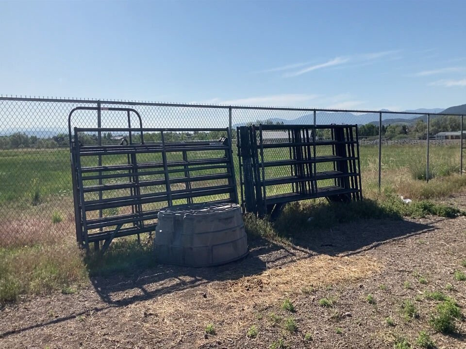 Fundraising efforts continue for horses at Lewis and Clark County Fairgrounds