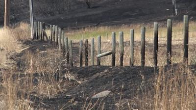 Bridger Foothills Fire burned posts