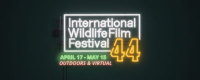 44th Annual International Wildlife Film Festival Kicks Off