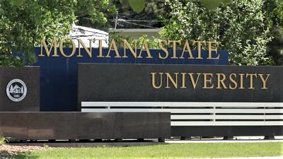 Montana State University MSU entrance sign