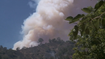 Smoke flying from wildfire