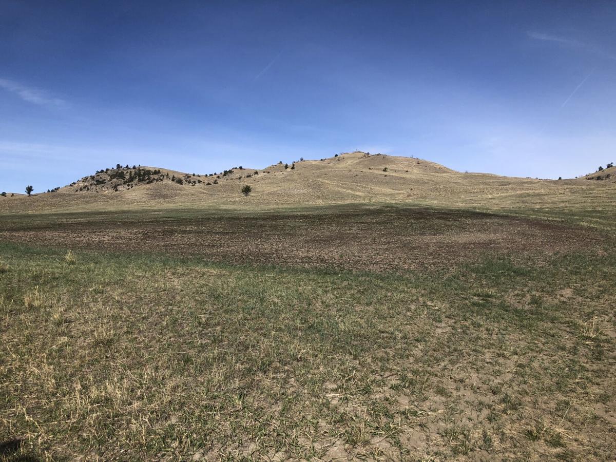 Montana Family Farms: The future of hemp farming