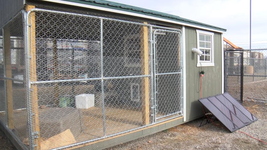 YVAS celebrates first anniversary of barn cat program, new ...