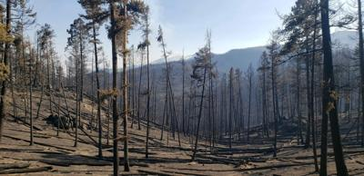 State Creek Fire 9.15.20