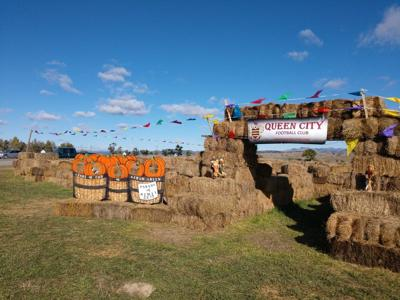 New hay maze open in Helena