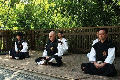 Shorinji Kempo: Japanese Martial Arts as Moving Zen image 1
