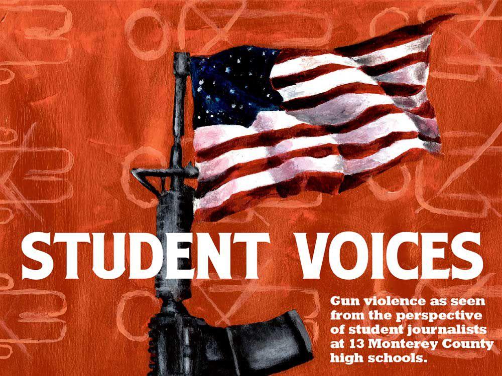 Student Voices intro