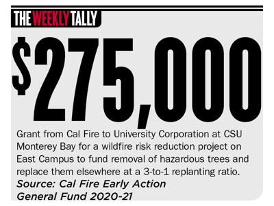 The Weekly Tally 09.23.21