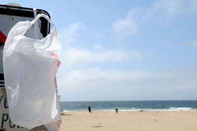 Plastic bag industry moves to stop California bag ban
