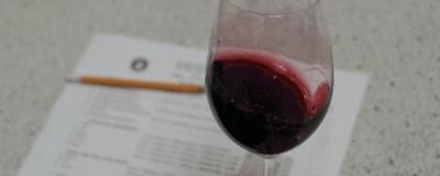 The Sommelier Certification Test Brutalizes A Young Wine Pro
