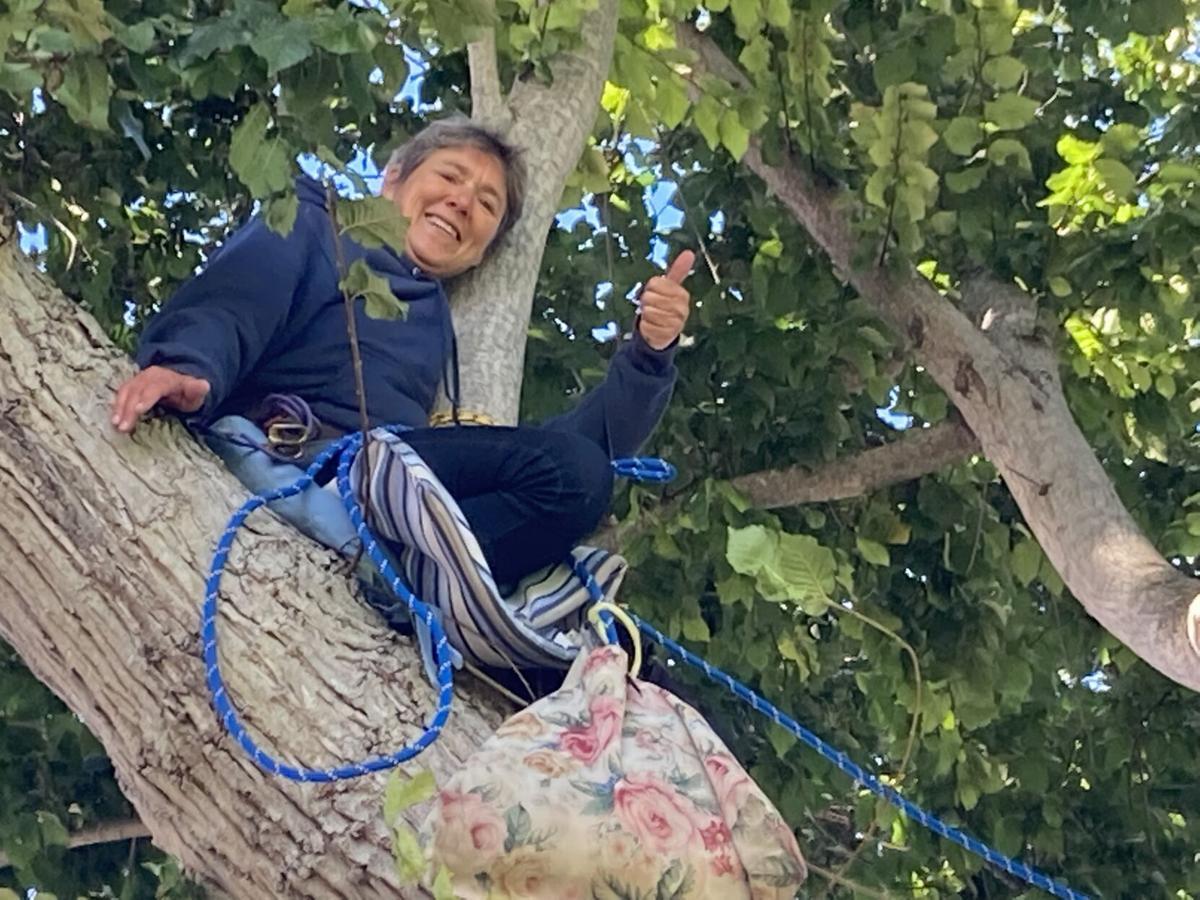 Rebecca Lee in Jewell Park Elm Tree