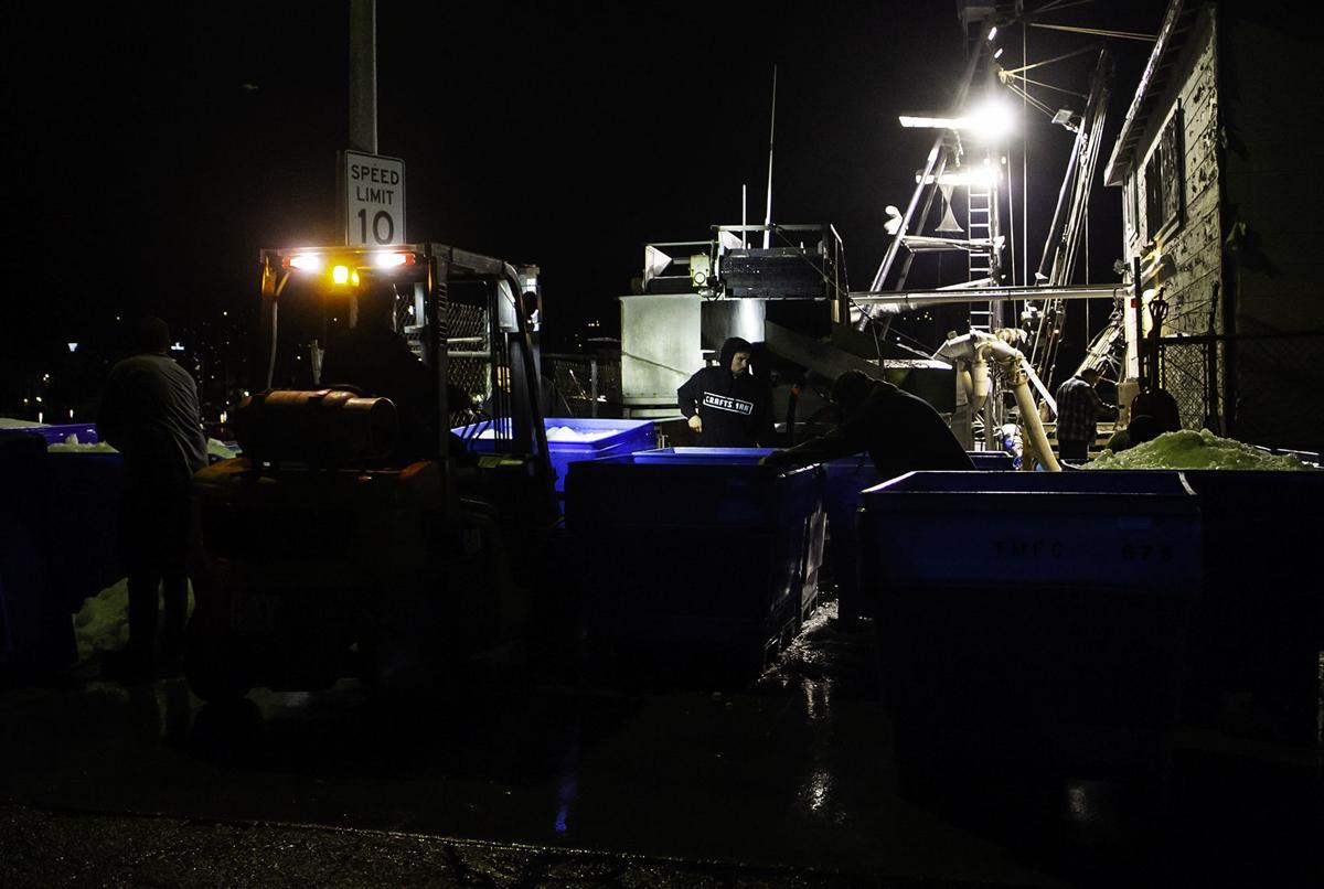 Jeremy Turner squid fishing