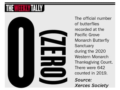 The Weekly Tally 01.28.21