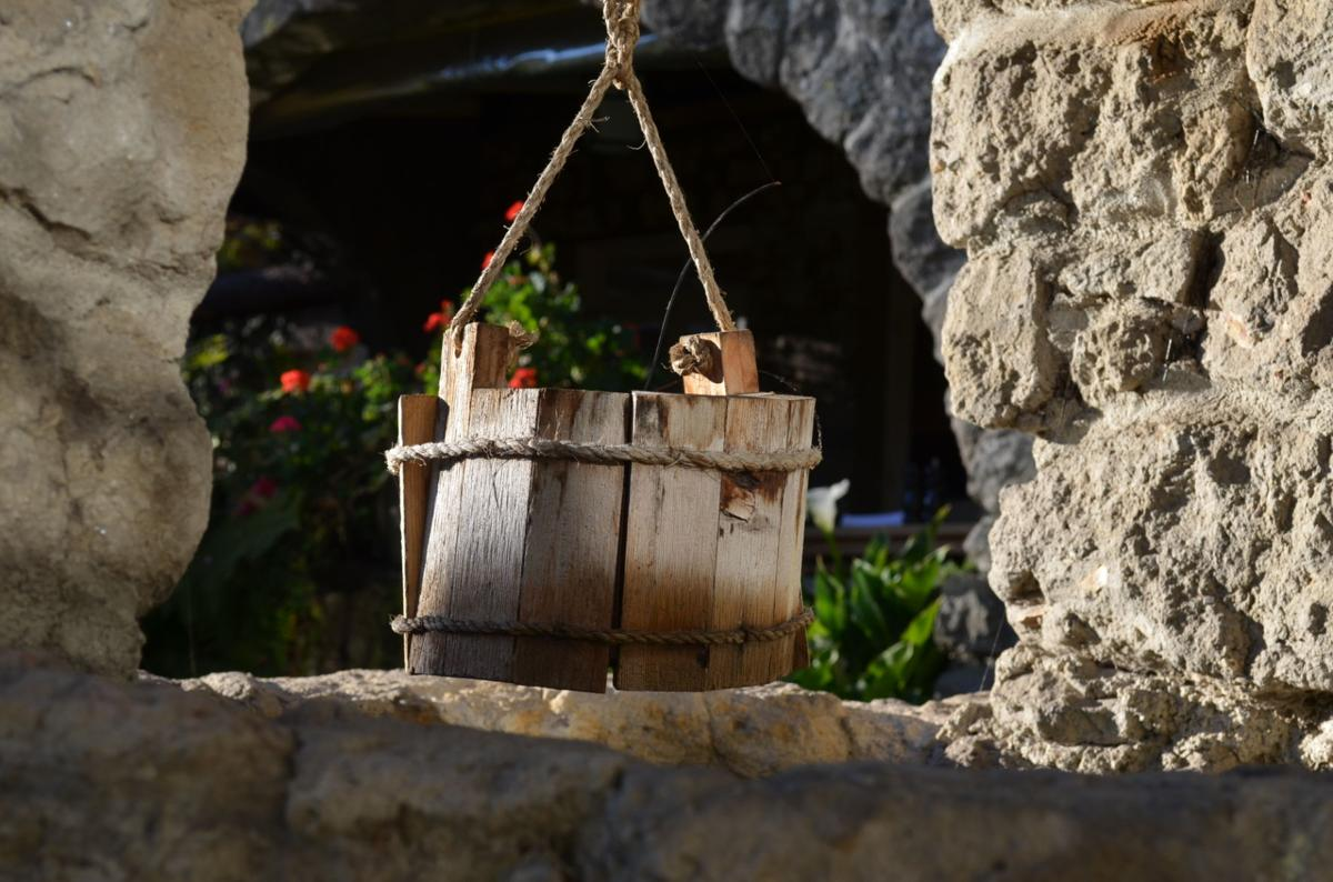 Tarpy's bucket.JPG (copy)