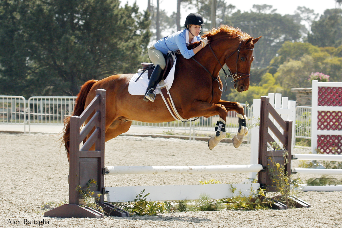 Horse Show At Pebble Beach Equestrian
