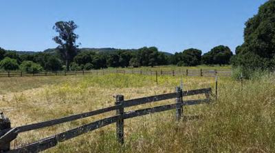 Rancho Los Robles