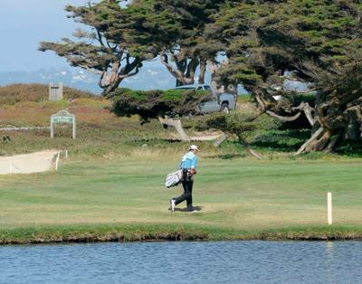 Beach Grove Golf Club Jobs
