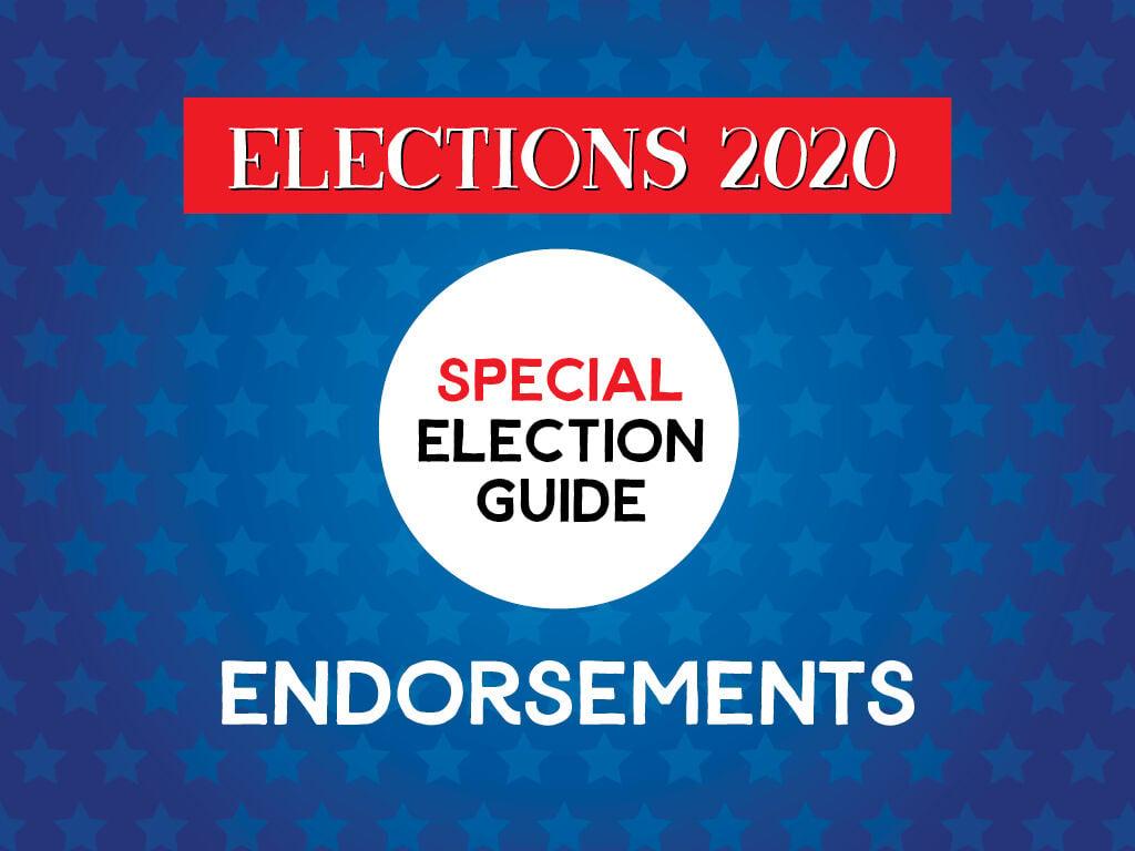 Endorsements 2020