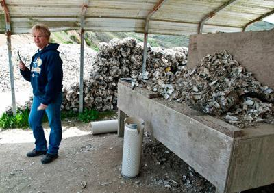 A superlative tour through oyster land debuts just as oyster availability is jeopardized.