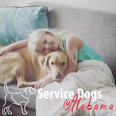 Camryn and Sunny, a Diabetic Alert Dog a1