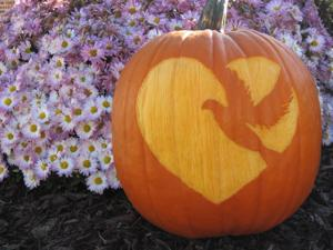 Pumpkin with Carved Logo