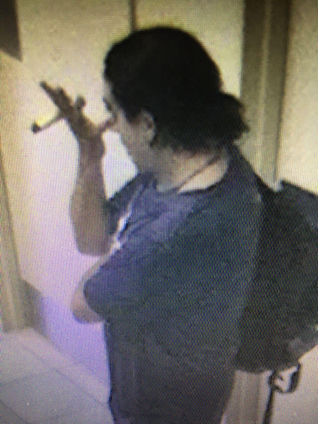 Vandalism suspect.1.JPG