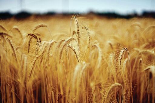 Farming generic pic