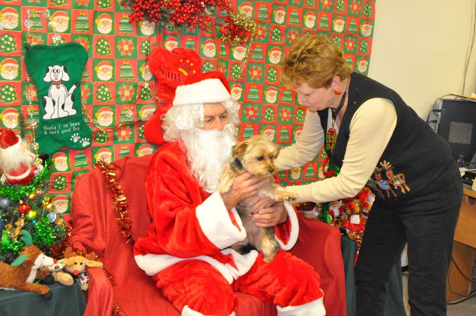 Paws With Claus Burke County Friends For Animals Offers Pet Photos With Santa Morganton Com
