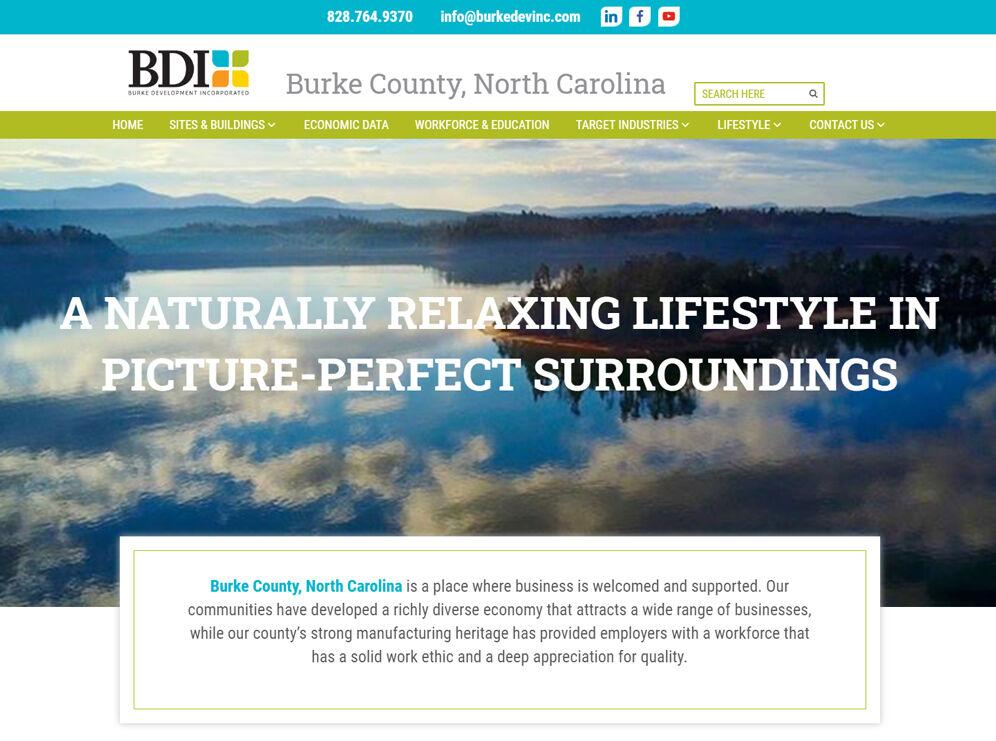 BDI website photo