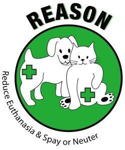 reason-logo-249x300.jpg