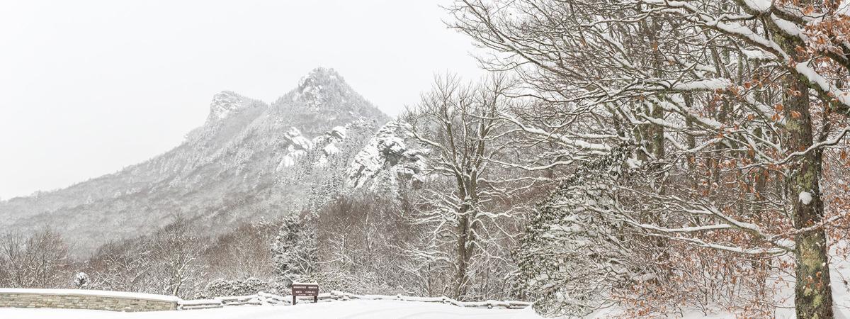 Grandfather Mtn snowscape pic