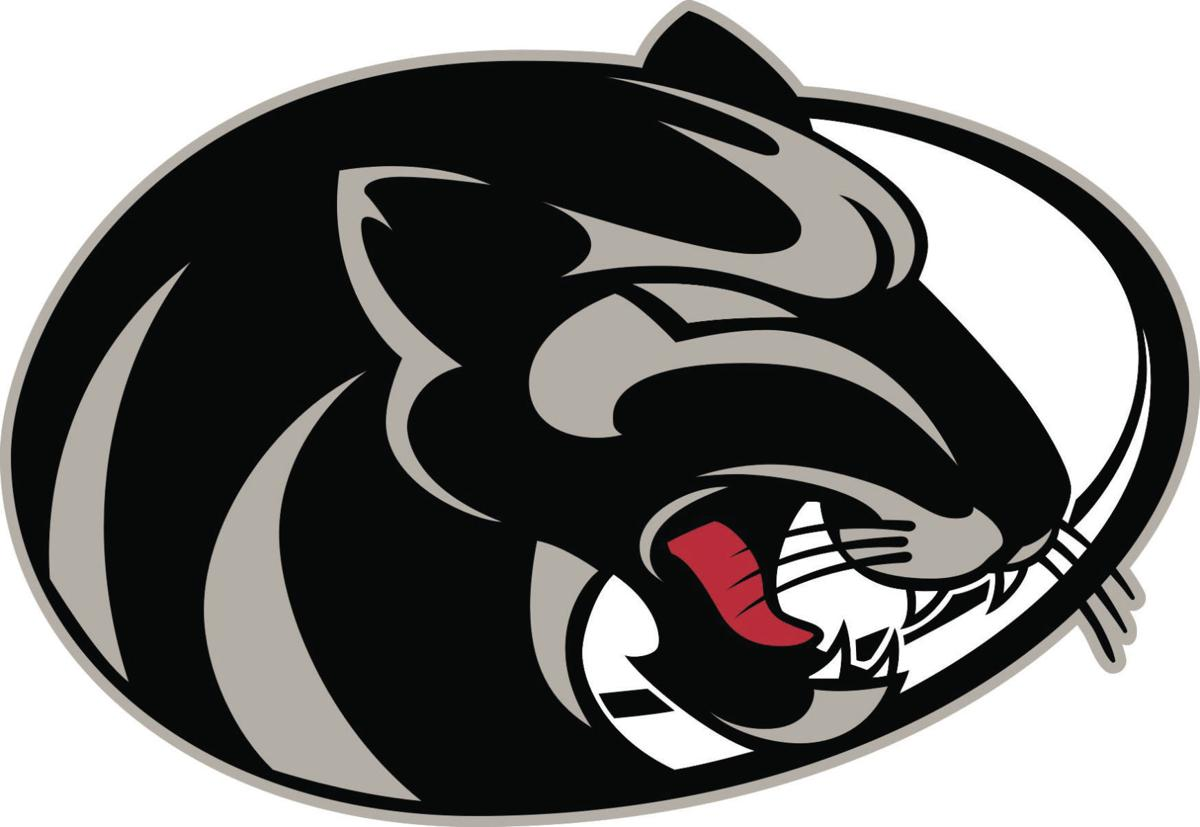 2019 Burke Co. H.S. Softball Preview Capsules