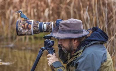 stock_wildlifephotography