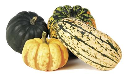 KITCHEN DIVA: Winter squash healthy addition to any meal
