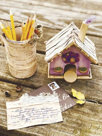 DONNA'S DAY: Collect tree bark for fun craft projects