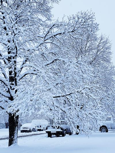 Winter Storm Gia Causes Power Outages Delays Openings News