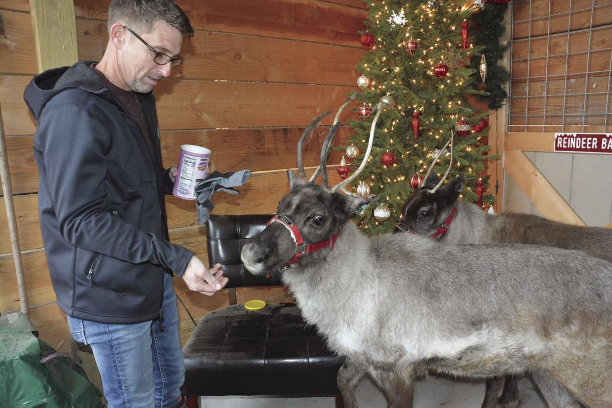 Kearney veterinarian adds reindeer to farm