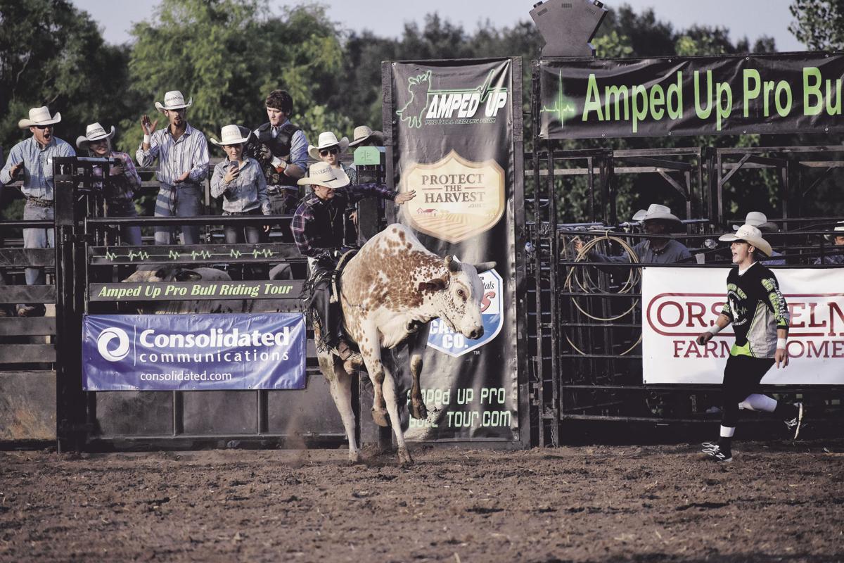 Bull rider holds on