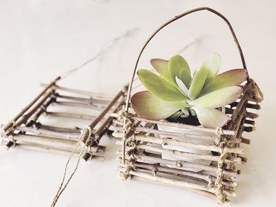 Make a twig basket for spring plants