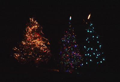 Kearney allows park tree decorating starting Nov. 15