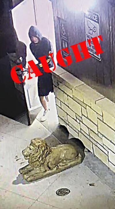 Kearney park vandal charged