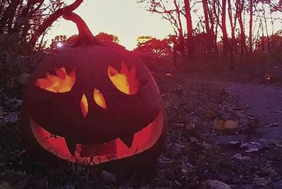 Fairy Tale Forest needs some pumpkin carving help