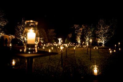 Light Up The New Year Brookgreen Gardens December 27